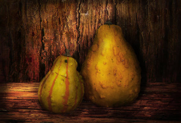 Photograph - Autumn - Gourd - A Pair Of Squash  by Mike Savad