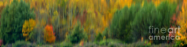 Photograph - Autumn Abstract Big Ditch Lake by Thomas R Fletcher