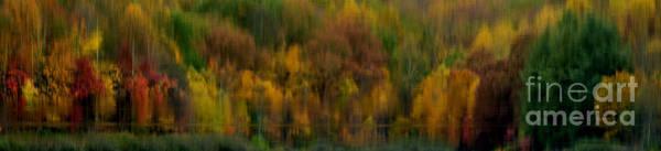 Photograph - Autumn Abstract by Thomas R Fletcher