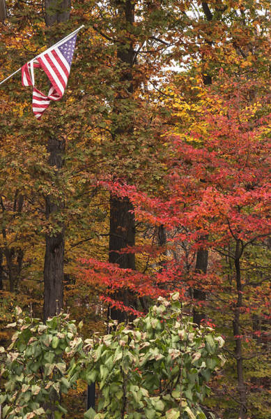 Photograph - Autumn And The Flag by Tom Singleton