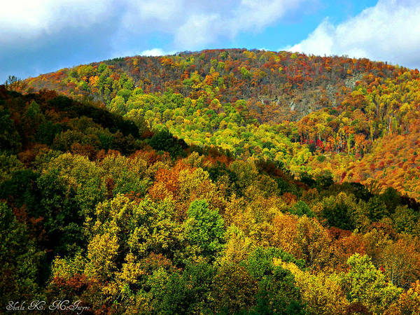 Photograph - Autumn At The Blue Ridge Mountains by Sheila Kay McIntyre
