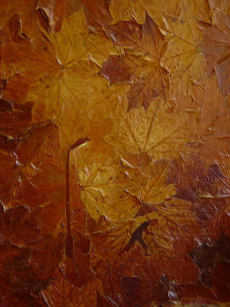 Avi Painting - Autumn by Avi Gorzhaltsan