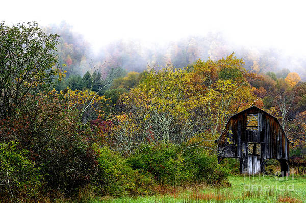 Tioga Photograph - Autumn Barn Tioga Road by Thomas R Fletcher