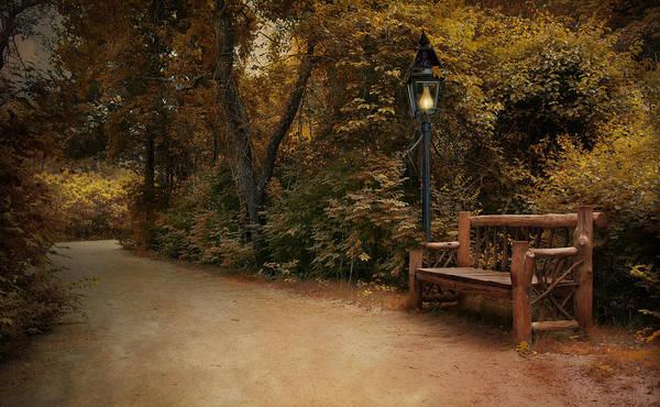 Photograph - Autumn Beckons by Robin-Lee Vieira