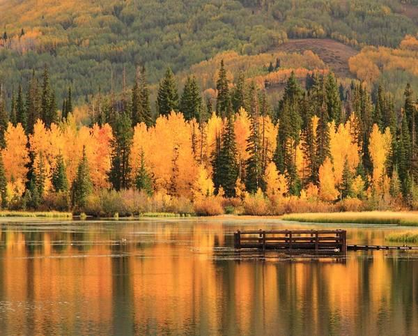 Autumn Calm Art Print by Gene Praag