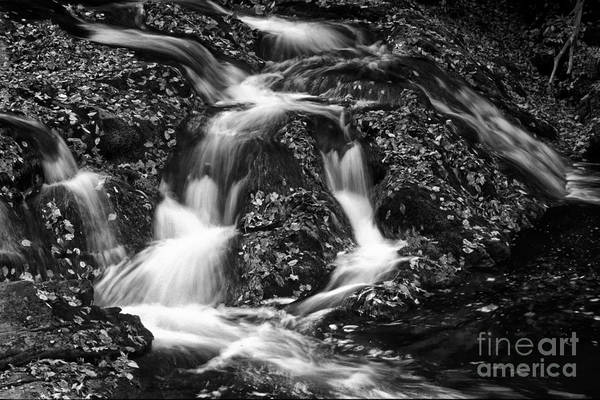 Photograph - Autumn Cascade by Paul W Faust -  Impressions of Light