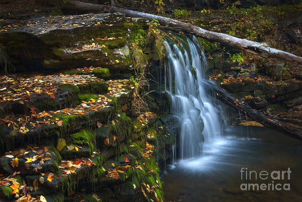 Photograph - Autumn Falls - 08 by Paul W Faust -  Impressions of Light