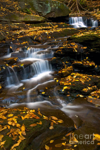 Photograph - Autumn Falls - 72 by Paul W Faust -  Impressions of Light