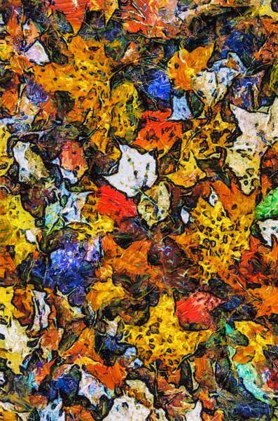 Digital Art - Autumn Floor by Jim Proctor