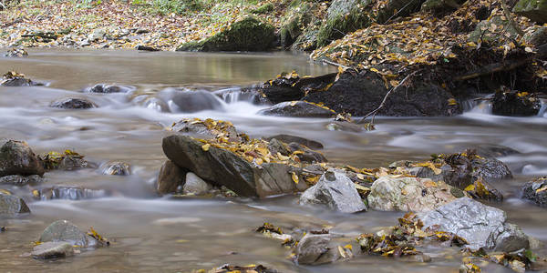 Jance Photograph - Autumn Flow by Ian Middleton