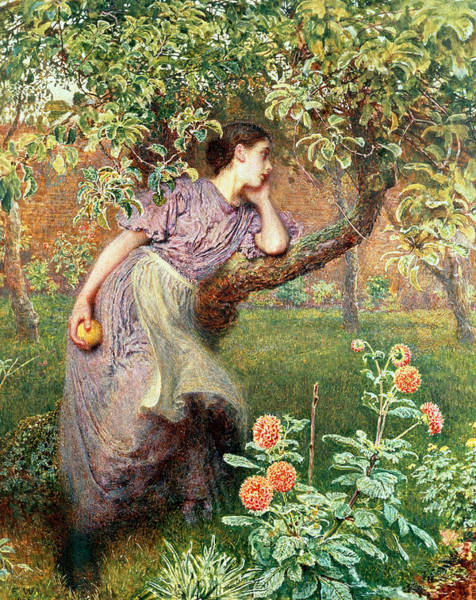 Apple Orchard Painting - Autumn by Frederick Walker