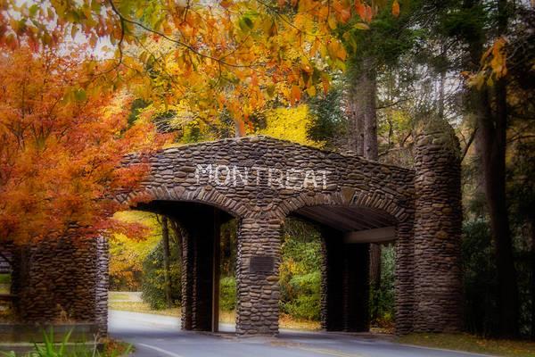 Photograph - Autumn Gate by Joye Ardyn Durham