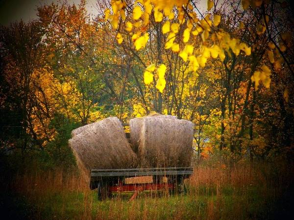 Wall Art - Photograph - Autumn Hay Wagon by Joyce Kimble Smith