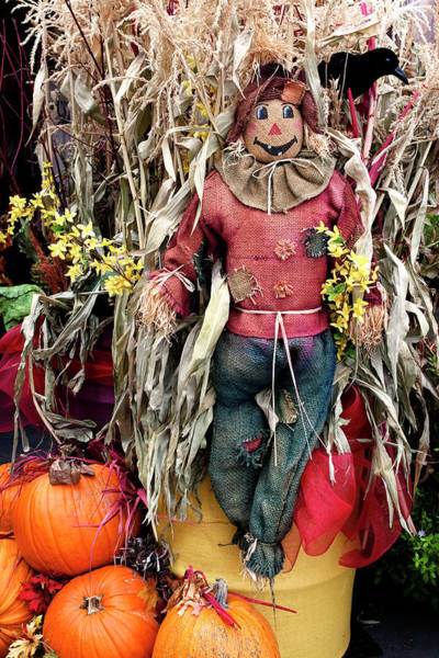 Photograph - Autumn Holidays by Lorraine Devon Wilke