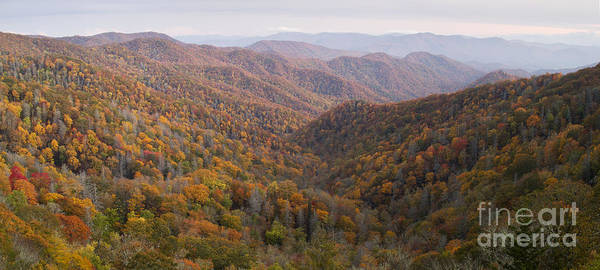 Wall Art - Photograph - Autumn In Great Smokie Mountains National Park by Dustin K Ryan