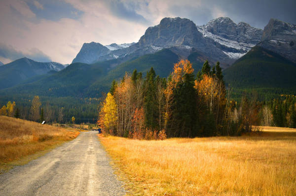 Photograph - Autumn In The Rockies by Tara Turner