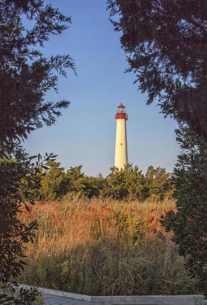 Photograph - Autumn Lighthouse by Tom Singleton