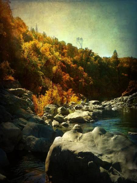 Yuba River Photograph - Autumn Lights by Leah Moore