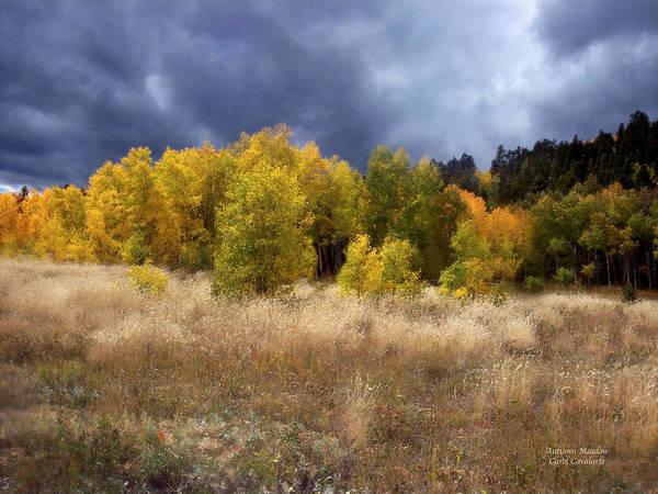 Mixed Media - Autumn Meadow by Carol Cavalaris
