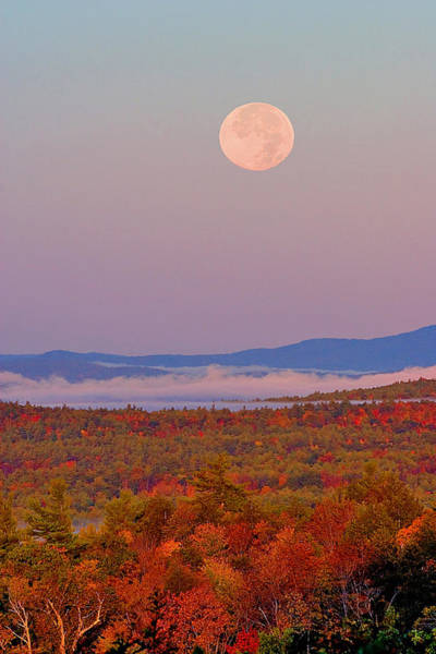 Photograph - Autumn Moonset by Larry Landolfi