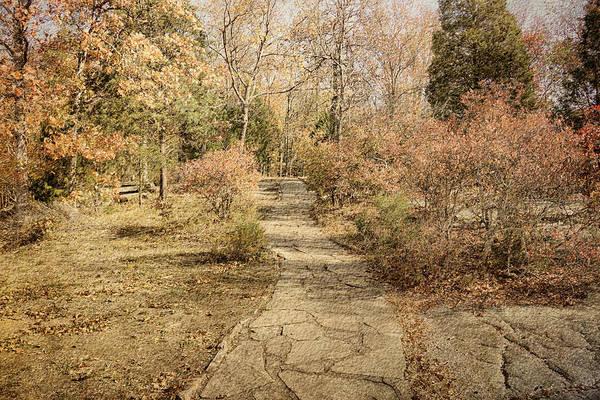 Photograph - Autumn Path by Sandy Keeton