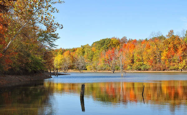 Wall Art - Photograph - Autumn Reflection by Brian Mollenkopf