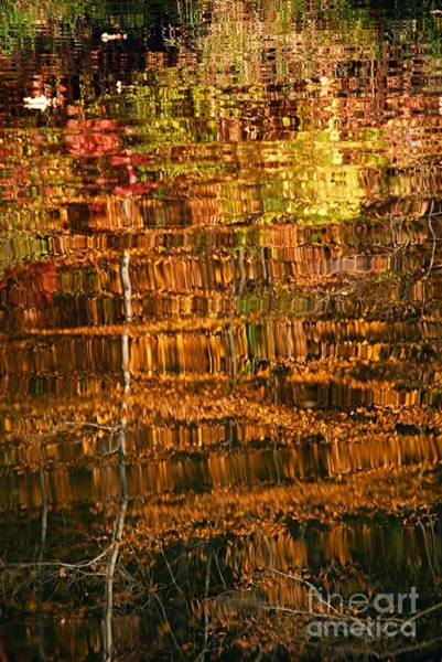 Photograph - Autumn Reflection I by Larry Ricker