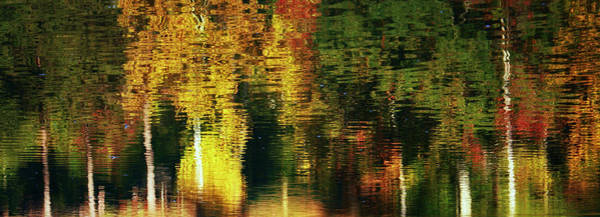 Photograph - Autumn Reflection by Sheila Kay McIntyre