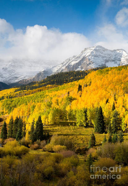 Photograph - Autumn Rockies by Steve Stuller