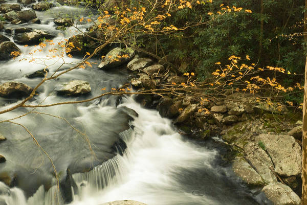Photograph - Autumn Spill by Rick Hartigan