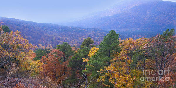 Scenic Byway Photograph - Autumn Splendor by Betty LaRue