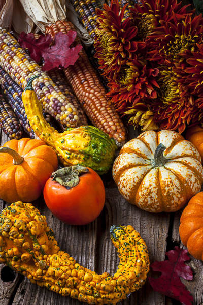 Gourd Photograph - Autumn Still Life Colors by Garry Gay