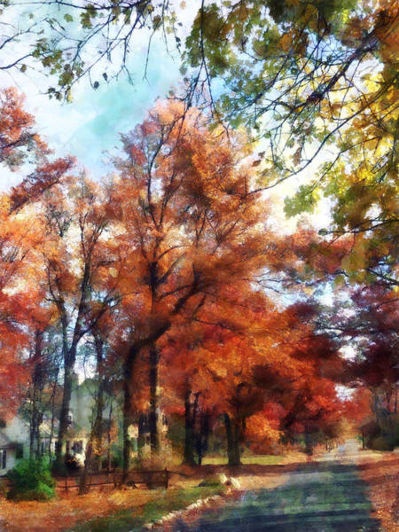 Photograph - Autumn Street Perspective by Susan Savad