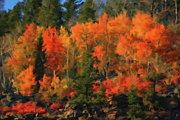 Digital Art - Autumn Water Colors  by Gary Baird