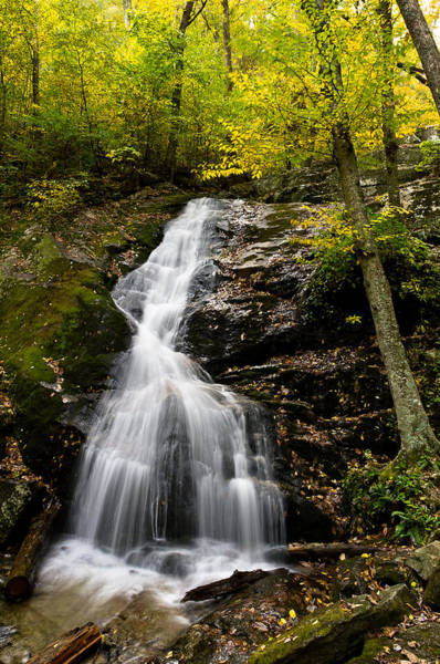 Photograph - Autumn Waterfall by Lori Coleman