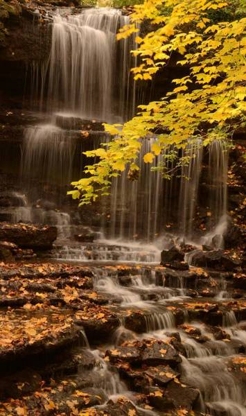 Weston Photograph - Autumn Waterfall by Maria Suhr