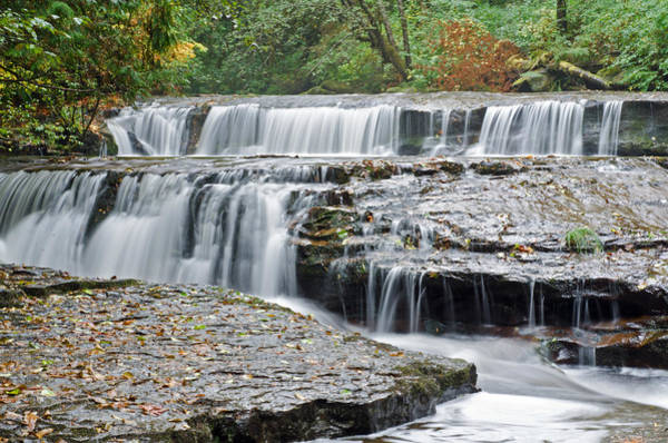 Photograph - Autumnal Falls by Margaret Pitcher