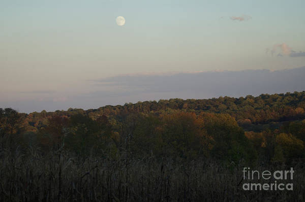 Photograph - Autumn's Harvest Under The Moon by Tom Luca