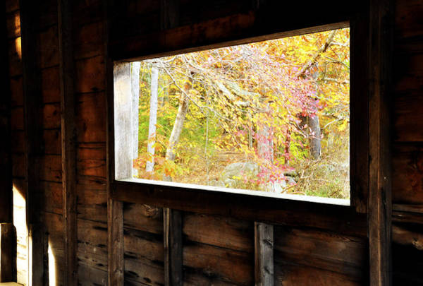 Photograph - Autumn's Window by Joanne Brown