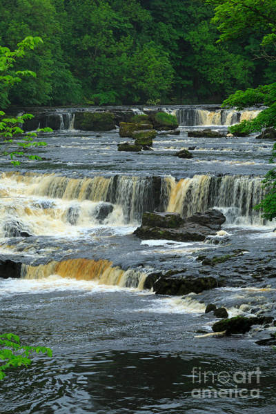 Wall Art - Photograph - Aysgarth Falls Wensleydale by Louise Heusinkveld