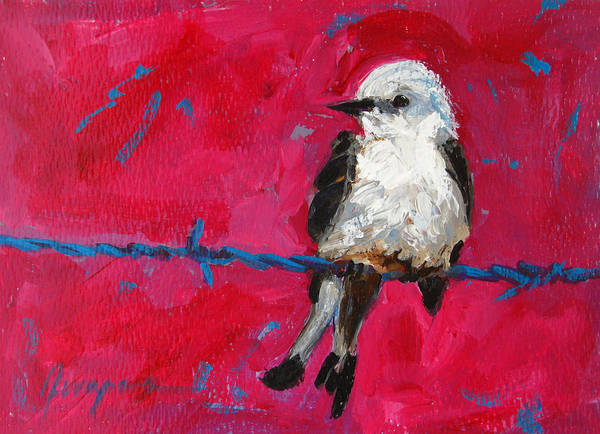 Baby Bird On A Wire Art Print