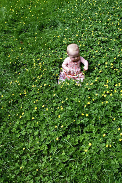 Baby In A Field Of Flowers Art Print