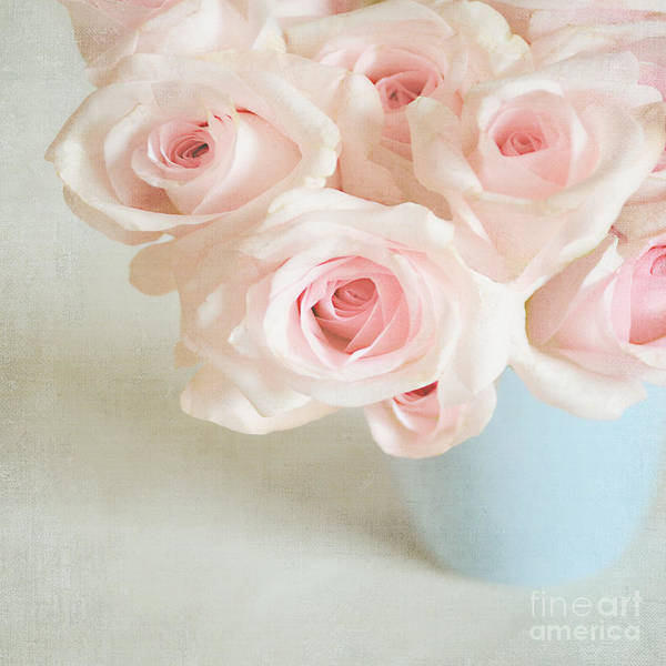 Randle Photograph - Baby Pink Roses by Lyn Randle