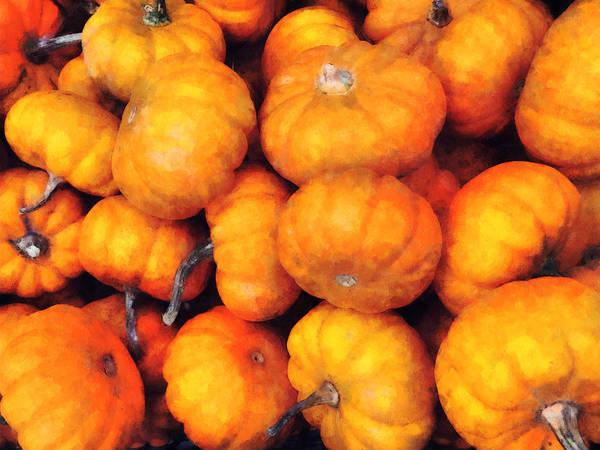 Photograph - Baby Pumpkins by Susan Savad