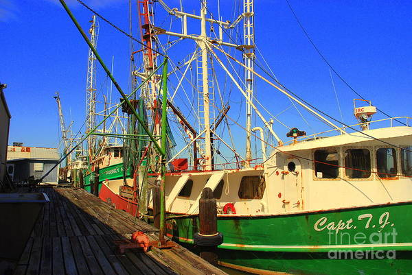 Photograph - Back In The Harbor by Susanne Van Hulst