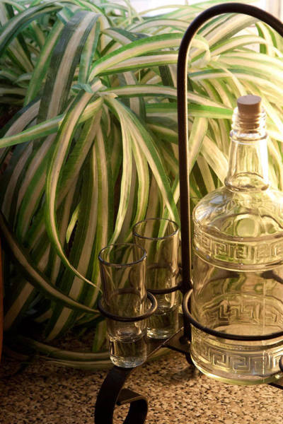 Photograph - Backlit Bottle And Glasses by James Woody