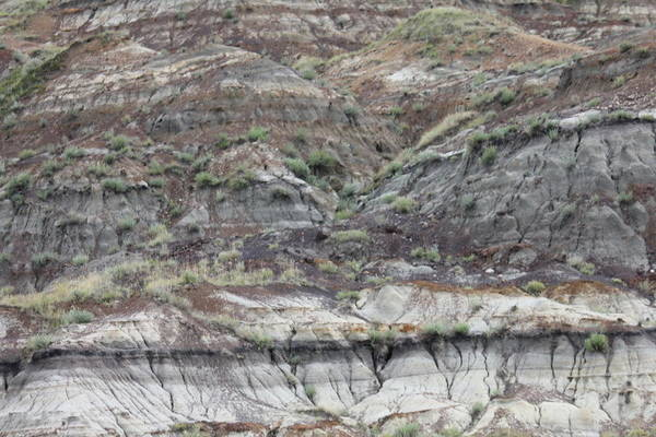 Photograph - Badlands by Donna L Munro