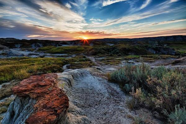 Photograph - Badlands Setting by David Buhler