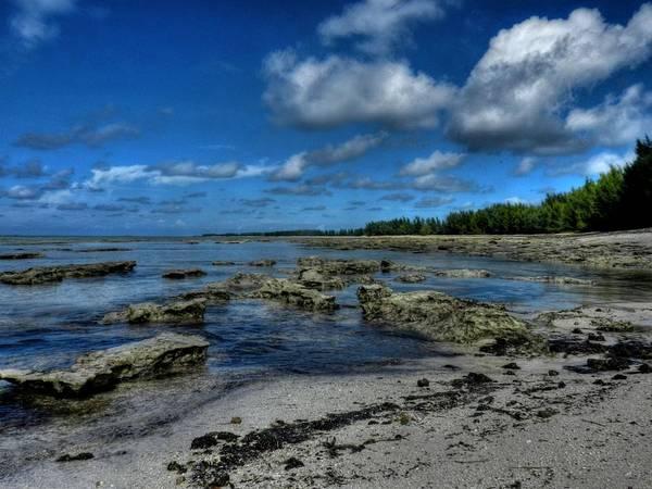 Photograph - Bahamas 039 by Lance Vaughn