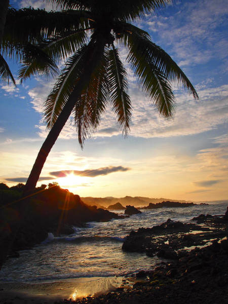 Photograph - Bahia Caletilla by Skip Hunt